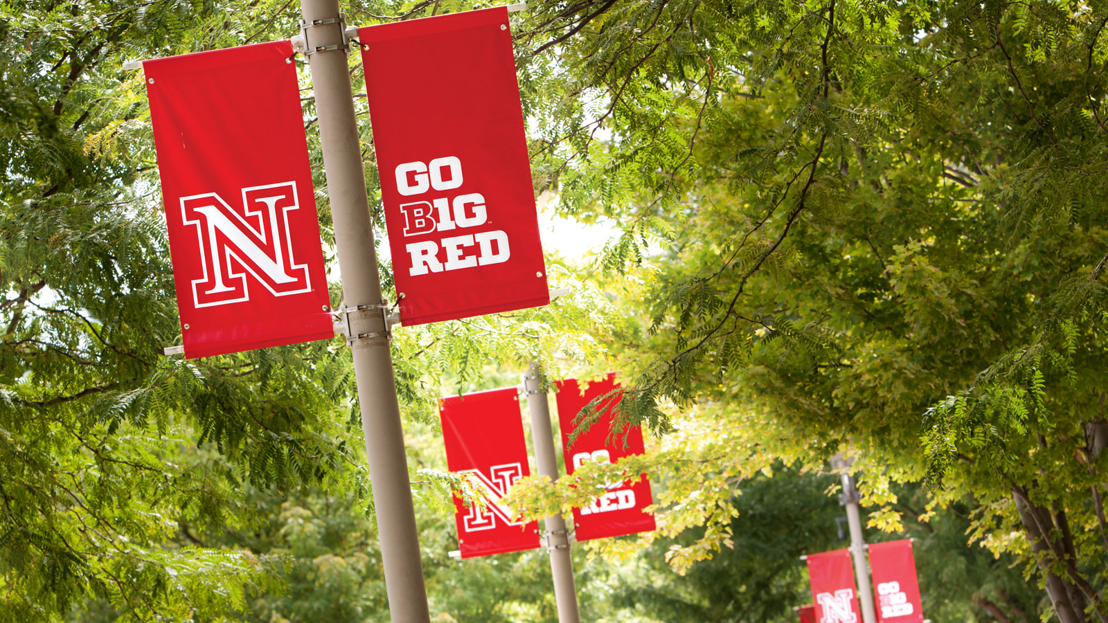 Go Big Red Banners